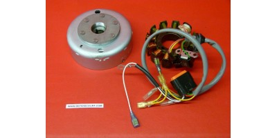 Volant magnétique complet Gasgas FP8106 Trial 125