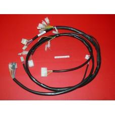 Faisceau électrique Gasgas 2007-13
