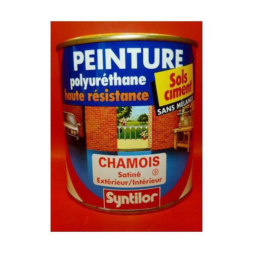 Peinture sol syntilor polyur thane 500ml couleurs aux choix for Choix des couleurs de peinture