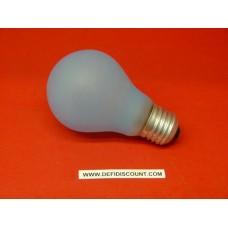 Ampoule incandescence  40 watts E27 Paulmann
