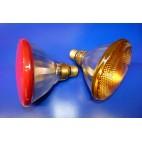 Ampoule halogène Paulmann PAR38 122mm 80w 230v