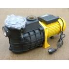 Pompe de piscine 250W avec pré-filtre