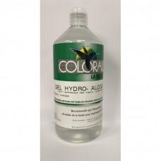 Gel hydroalcoolique pour l'antisepsiedes mains 1 litre