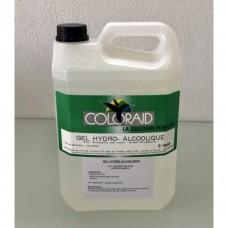 Gel hydroalcoolique pour l'antisepsiedes mains flacon 5 Litres